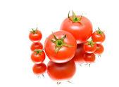 Close-up di pomodori. sfondo bianco. — Foto Stock
