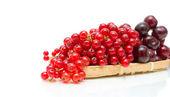 赤スグリ、チェリー、白い背景の上にクローズ アップ — ストック写真
