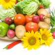 Vegetables and sunflower close-up — Stock Photo