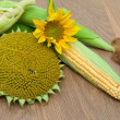 Flowers sunflower and corn on cob on wooden board — Stock Photo #30557799