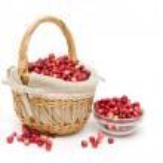 Ripe cranberries isolated on a white background. horizontal phot — Stock Photo #31174515