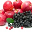 Chokeberry, apples and cranberries close-up. white background. — Stock Photo