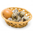 Eggs in a basket isolated on a white background close-up — Stock Photo #31364859