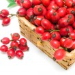 rosehip berries closeup on white background — Stock Photo #31410115