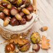 Chestnuts and acorns in a wicker basket — Stock Photo