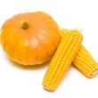 Pumpkin and corn on the cob close up on a white background. — Stock Photo #36785715