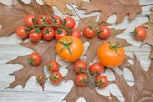 Tomatoes on the autumn leaves on a wooden table — Stock Photo