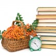Rowan berries, books and clock alarm clock on a white background — Stock Photo #50735265