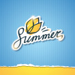 Summer illustration, vector eps 10 — Imagen vectorial