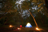 Night Camping Scene — Stock Photo