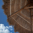 Foto Stock: Thatched Umbrella