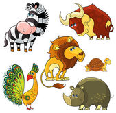 African wild animals set. Lion, buffalo, zebra, rhino, turtle, peacock — Stock Vector
