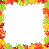 Colorful Autumn Leafs Frame — Stock Vector