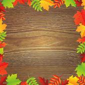 Color Autumn Leafs Frame — Stock Vector