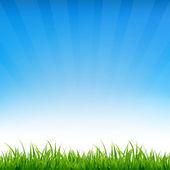 Céu azul com grama — Vetor de Stock