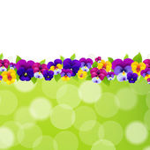 Spring Flowers Border — Stock Vector