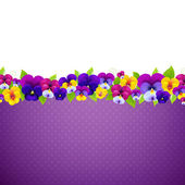 Violet Pansies Flowers — Stock Vector
