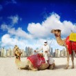 Stock Photo: Dubai Marinbeach and Camel