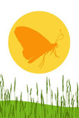 Butterfly on an orange circle — Stock Vector