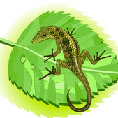Lizard on a leaf — Stock Vector