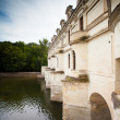 Castle of chenonceau — Stock Photo #19836963