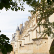 Royalty-Free Stock Photo: Castle of  chenonceau