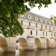ストック写真: Castle of chenonceau