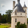 Castle of  chenonceau - Stock Photo
