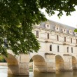 Castle of chenonceau — Stock Photo #20037909