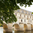 Castle of chenonceau — Stock Photo #20126141