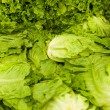 Fresh salads on the market — Stockfoto