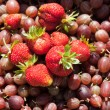 Gooseberries and strawberries in a basket — Stock Photo