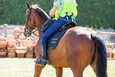 French mounted gendarme — Stock Photo