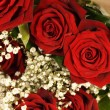 Bouquet of roses — Stock Photo #6389564