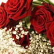 Bouquet of roses — Stock Photo #9444563