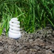Light bulb between drought land and green grass — Stock Photo
