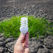 Stock Photo: Energy saving lamp in hand over green grass and cracked earth