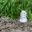 Concept light bulb between drought land and green grass — Stock Photo #13130696