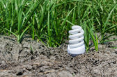 Concept light bulb between drought land and green grass — Stock Photo