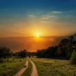 Dramatic sunset over road in wood — Stock Photo #13546072