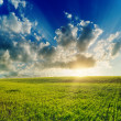 Stock Photo: Good sunset over green field