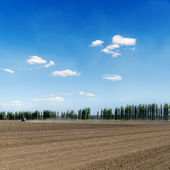 Black ploughed field under blue sky — Stock Photo