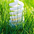 Energy-saving lamp in green grass — Stock Photo