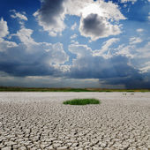 Drought earth under rainy clouds — Stock Photo