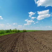 Black spring field and cloudy sky — Stock Photo
