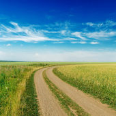 Rural road to horizon under cloudy sky — Stock Photo