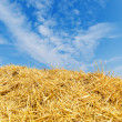 Heap of golden straw under blue sky — Stock Photo