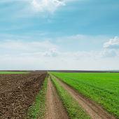 Landelijke weg in voorjaar velden en bewolkte hemel — Stockfoto
