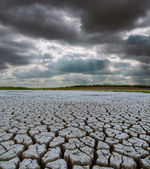 Drought land under dramatic sky — Stock Photo