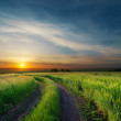 Sunset over rural road near green field - Stock Photo